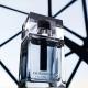 Dior Homme Eau for Men: Iris e Gusto Comune